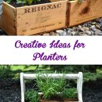 Creative Ideas for Planters