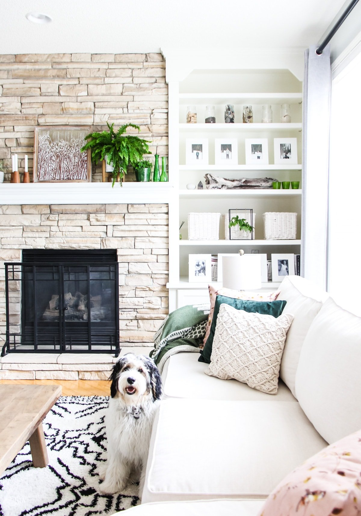 a front half view of a light stone fireplace decorated with plants, candles and art. next to it are white built in shelves filled with white framed pictures, baskets and pops of green. in the foreground is a cream coloured couch with pillows. and THE CUTEST black and white puppy