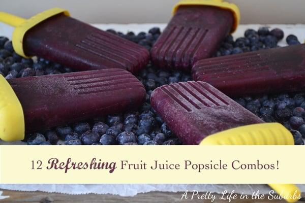12 Fresh Fruit Juice Popsicle Flavour Combos!