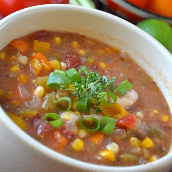 Slow Cooker Fiesta Chicken Stew