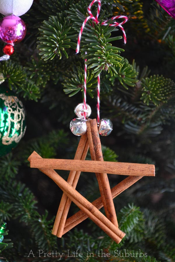 Cinnamon Star Ornament1