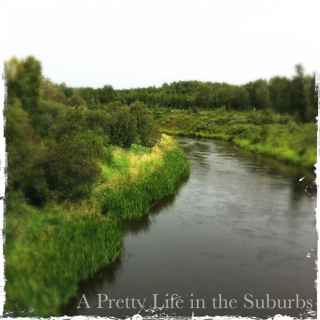 A Pretty Life In The Suburbs: Behind The Blog: Answering How Do I Do It?