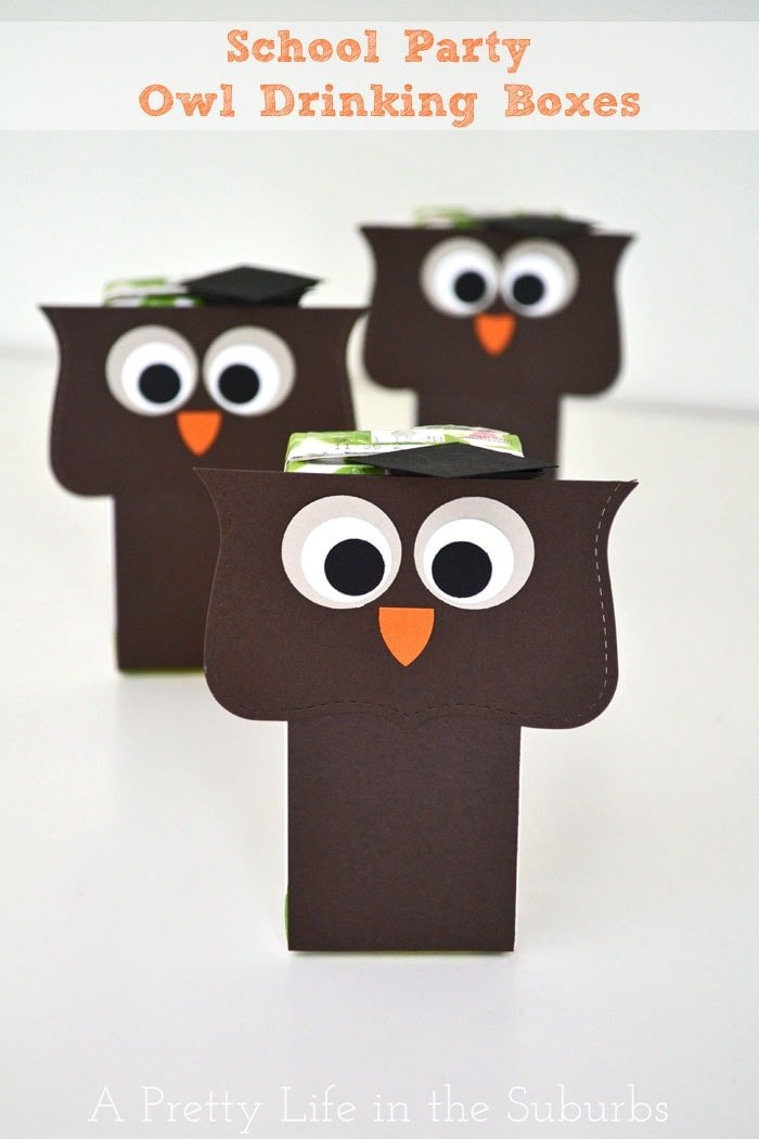 School Party Owl Drinking Boxes {A Pretty Life}