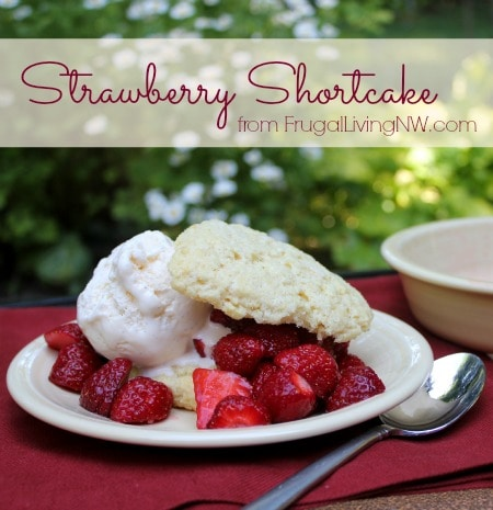 Strawberry-Shortcake-1