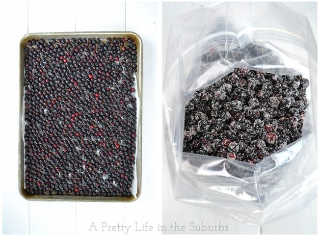 Freezing Saskatoon Berries {A Pretty Life}
