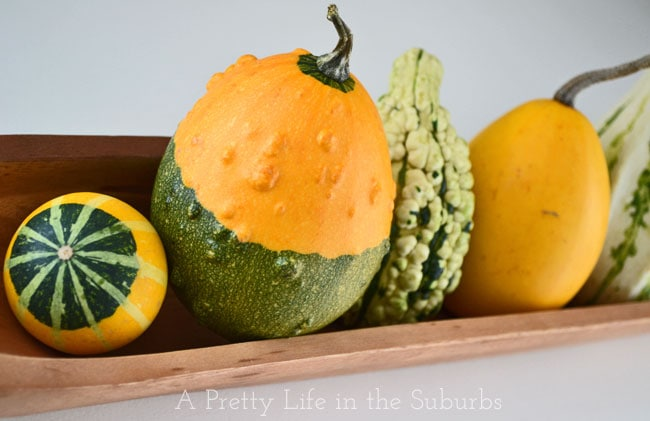 Fall Vignette {A Pretty Life}