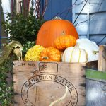 Fall Porch Pots with Pumpkins and Squash