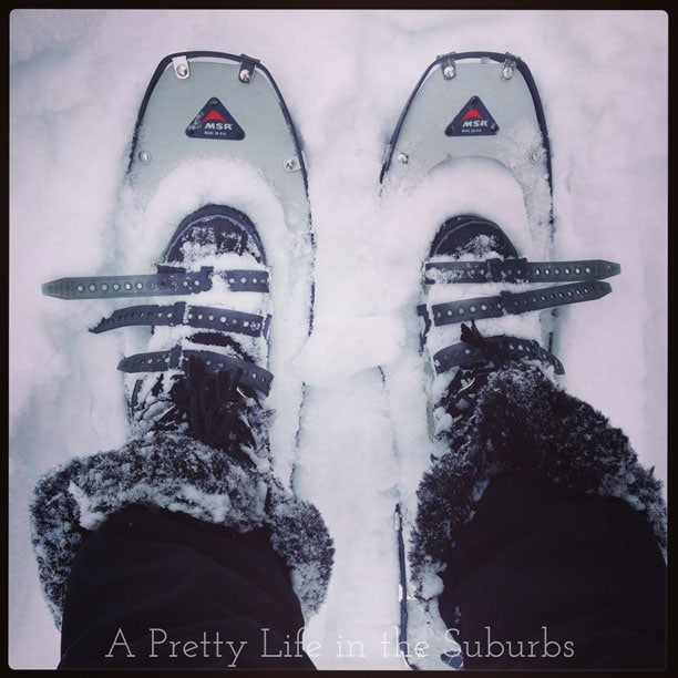 Christmas-2013-5{A-Pretty-Life}