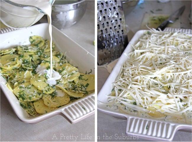 Dill Scalloped Potatoes {A Pretty Life}