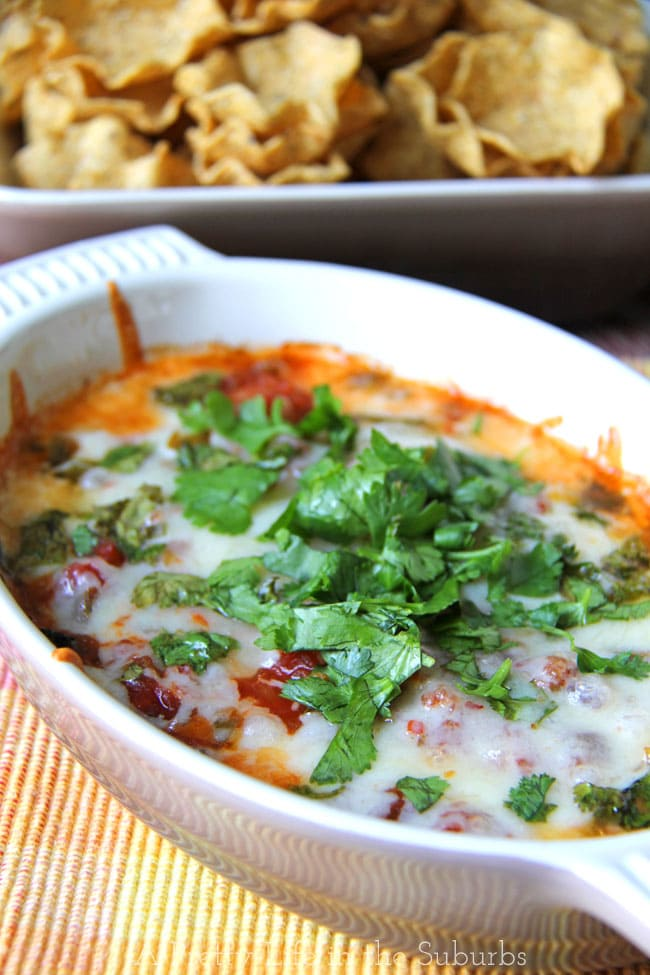 Cheesy Baked Salsa Dip {A Pretty Life}