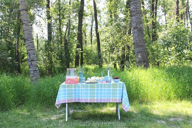 Tips for an easy summer picnic! {A Pretty Life}
