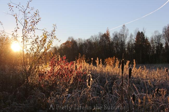 Thanksgiving-2014-{A-Pretty-Life}