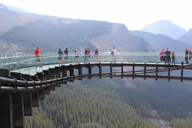 Jasper Glacier Skywalk 4