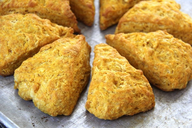 Pumpkin Biscuits {A Pretty Life}