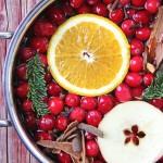 Christmas Stovetop Potpourri  4{A Pretty Life}