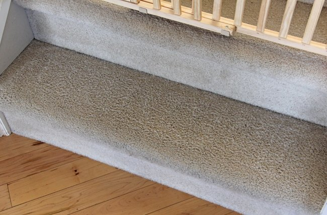 Hoover Power Scrub Carpet Cleaner Review After