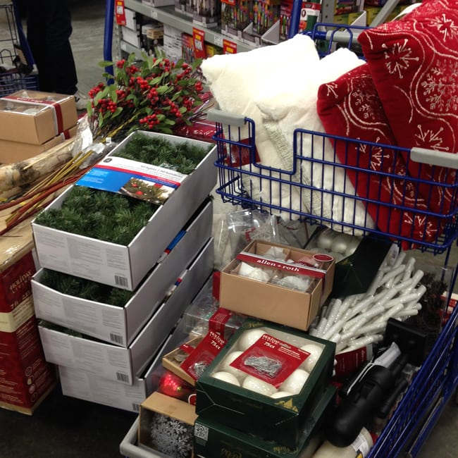Lowes Shopping Trip 3