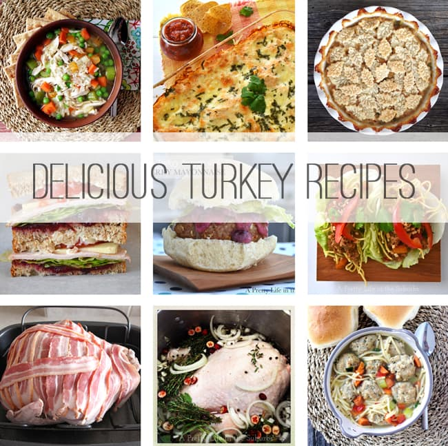 10 Delicious Turkey Recipes {A Pretty Life}
