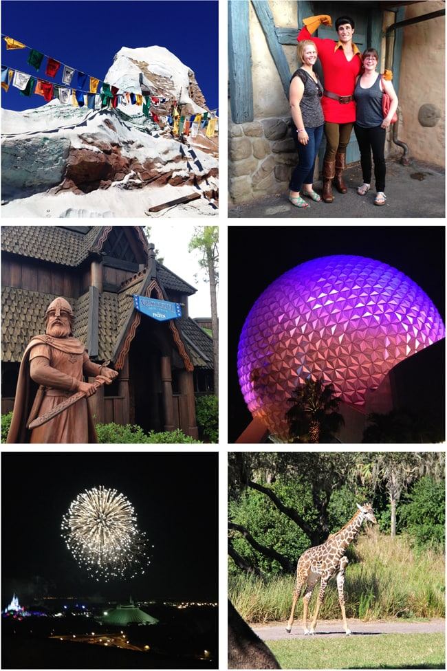 Tips for Travelling Walt Disney World Resort Florida 3