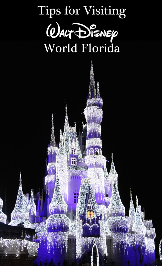 Tips for Visiting Walt Disney World Resort Florida