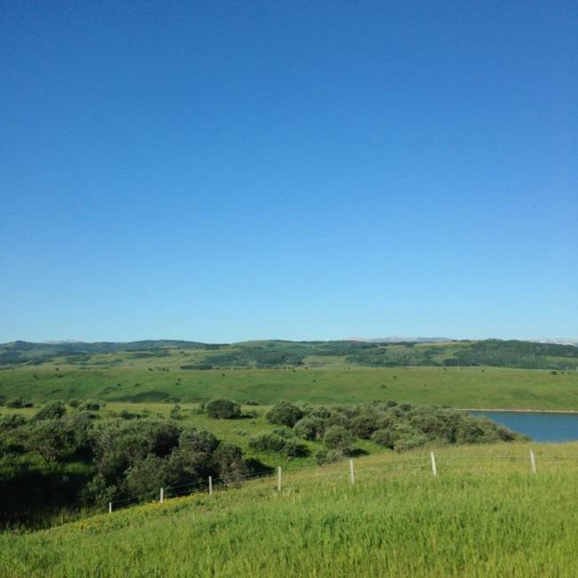 The Cowboy Trail {A Pretty Life}