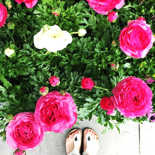 Container Gardening  {A Pretty Life}2
