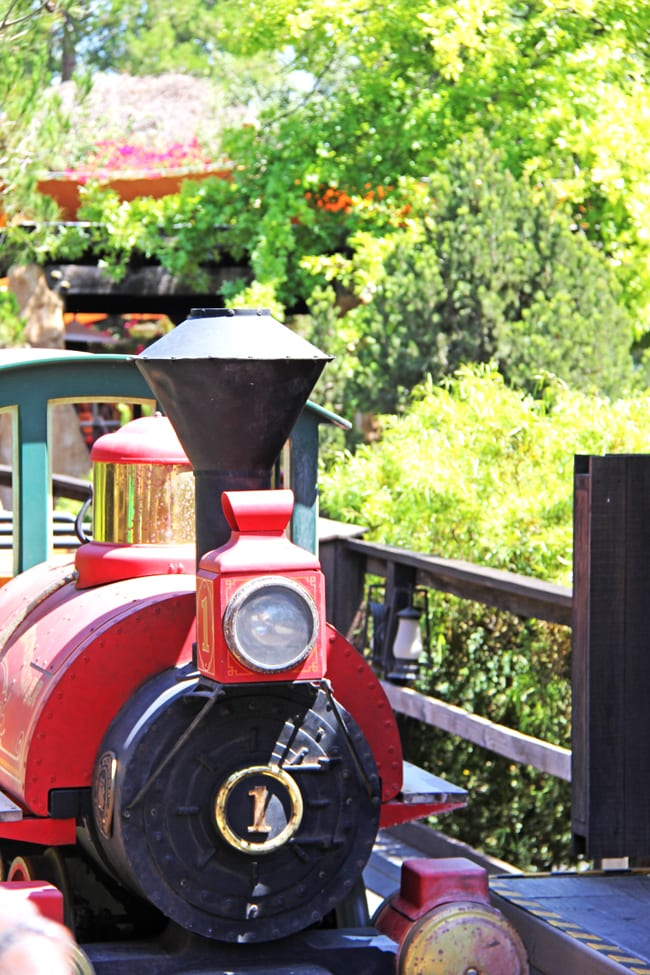 Tips for Visiting Disneyland, California 7