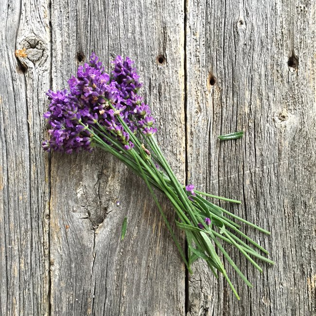 Lavender Honey Cake {A Pretty Life}