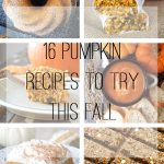 16 Pumpkin Recipes To Try This Fall {A Pretty Life}