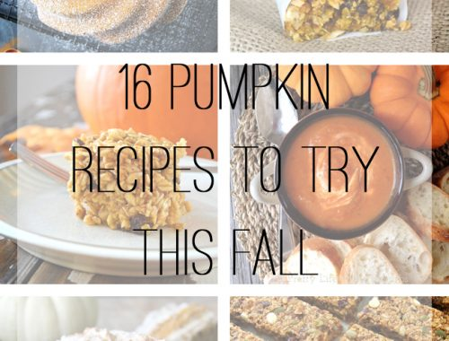 16 Pumpkin Recipes To Try This Fall {A Pretty Life}F