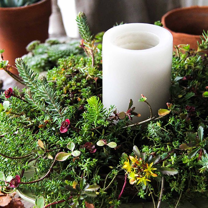 fall-sedum-wreath-candle-centrepiece-a-pretty-life-3
