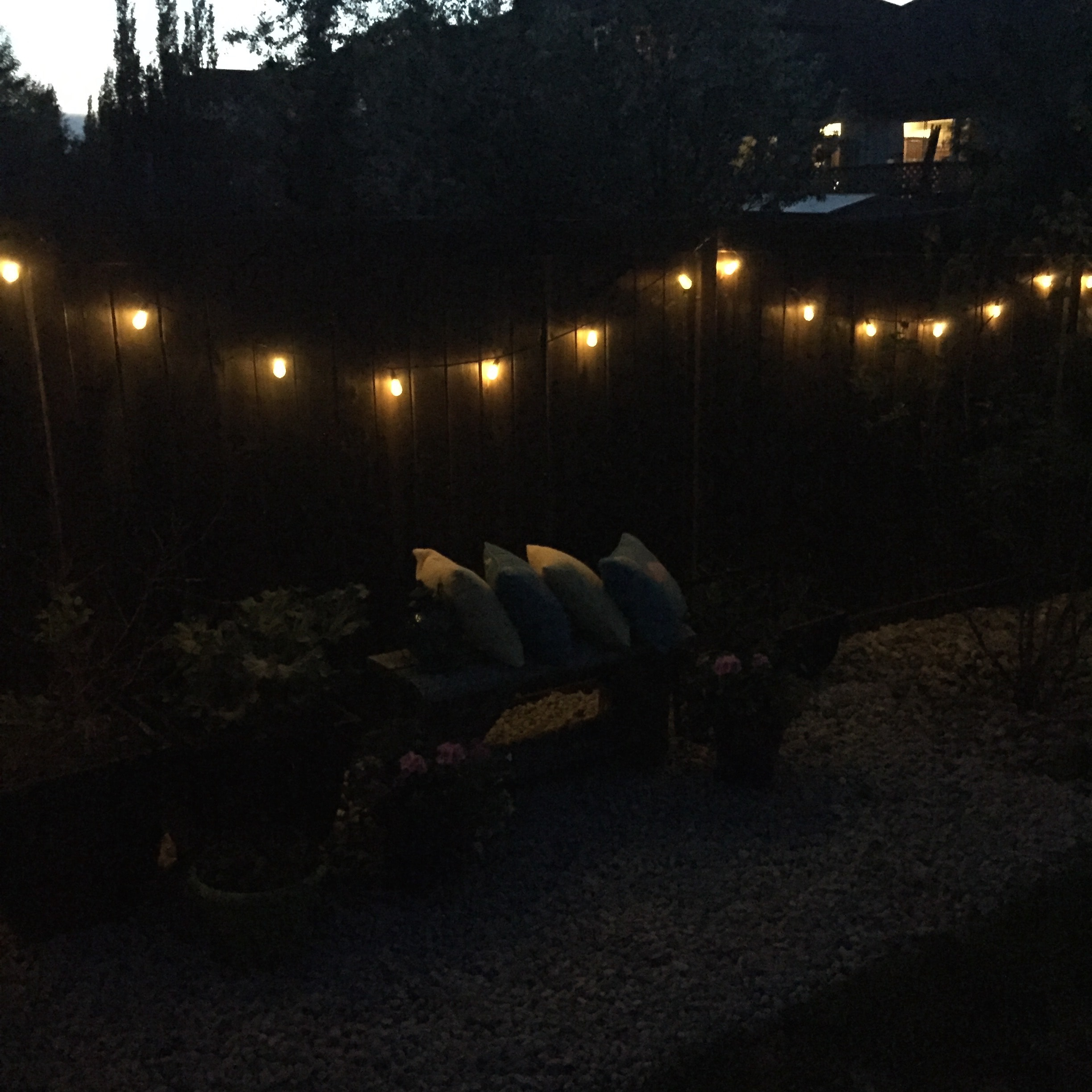 7 Ways to String Lights in your Backyard!