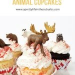 Easy Canadian Animal Cupcakes