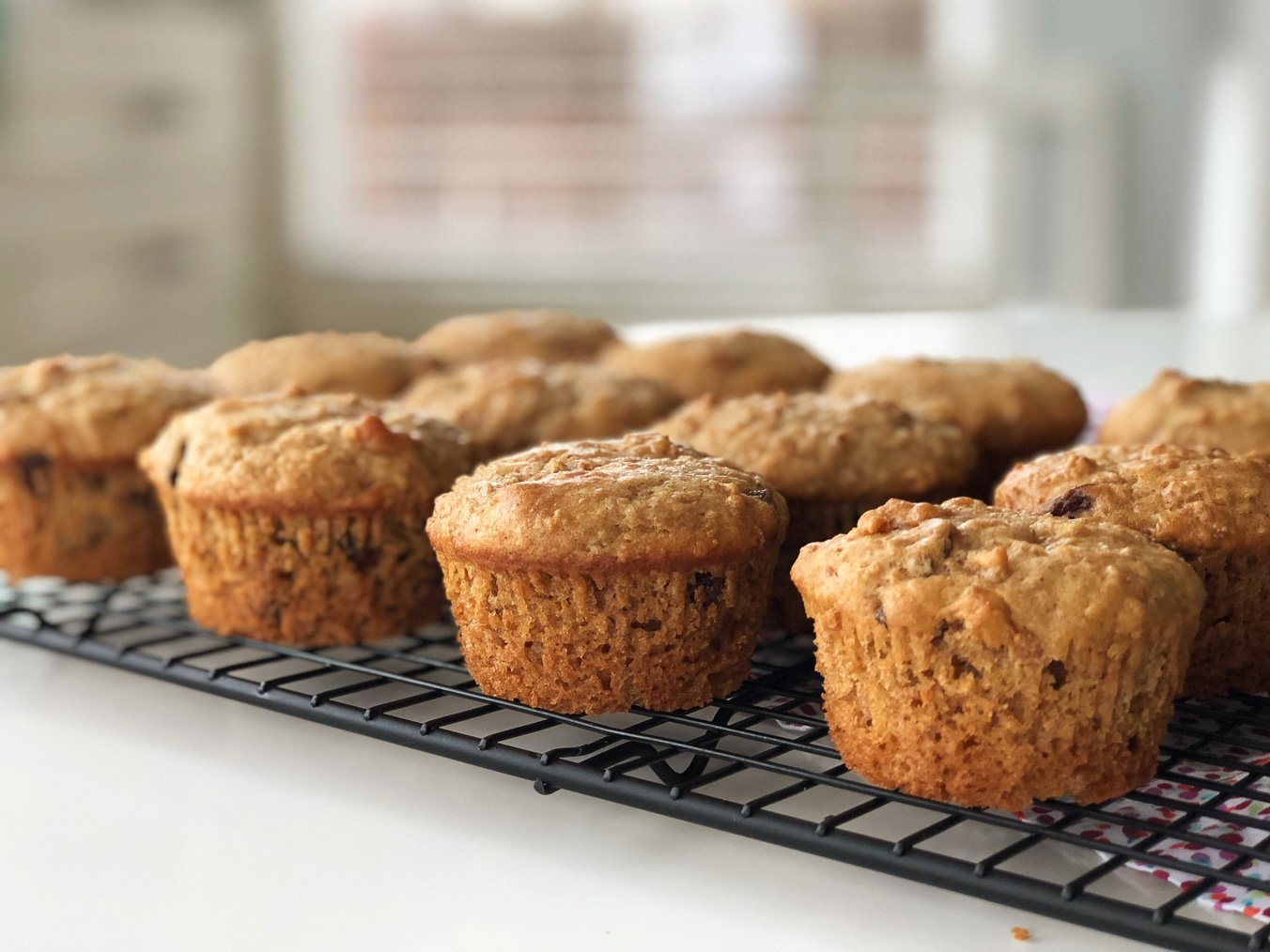 Classic Baking Recipes: Pail Full of Bran Muffins