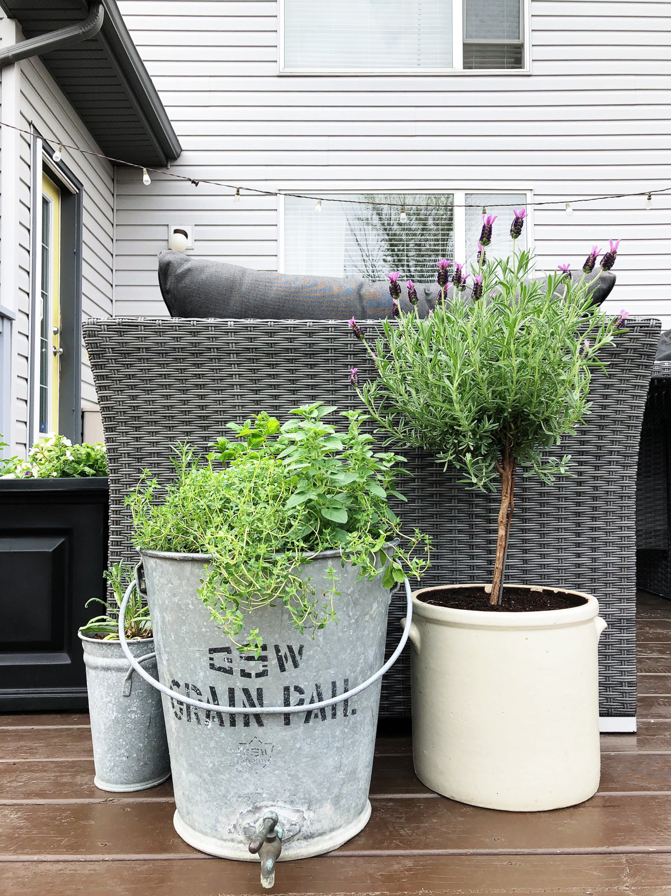 7 Inspirational Ideas for Beautiful Planters!