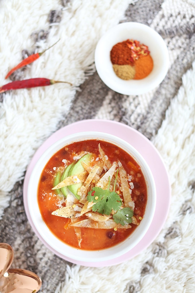 Vegan Slow Cooker Tortilla Soup with Winter Squash