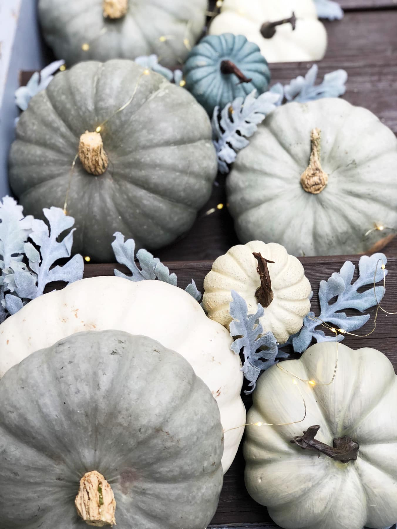 A top down view of blue and grey pumpkins and twinkly lights