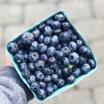 11+ Blueberry Recipes