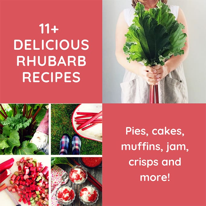 Delicious Rhubarb Recipes