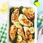 Lemon Garlic Turkey Over Orzo and Spring Vegetables