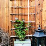 DIY Hanging Garden Trellis Tutorial
