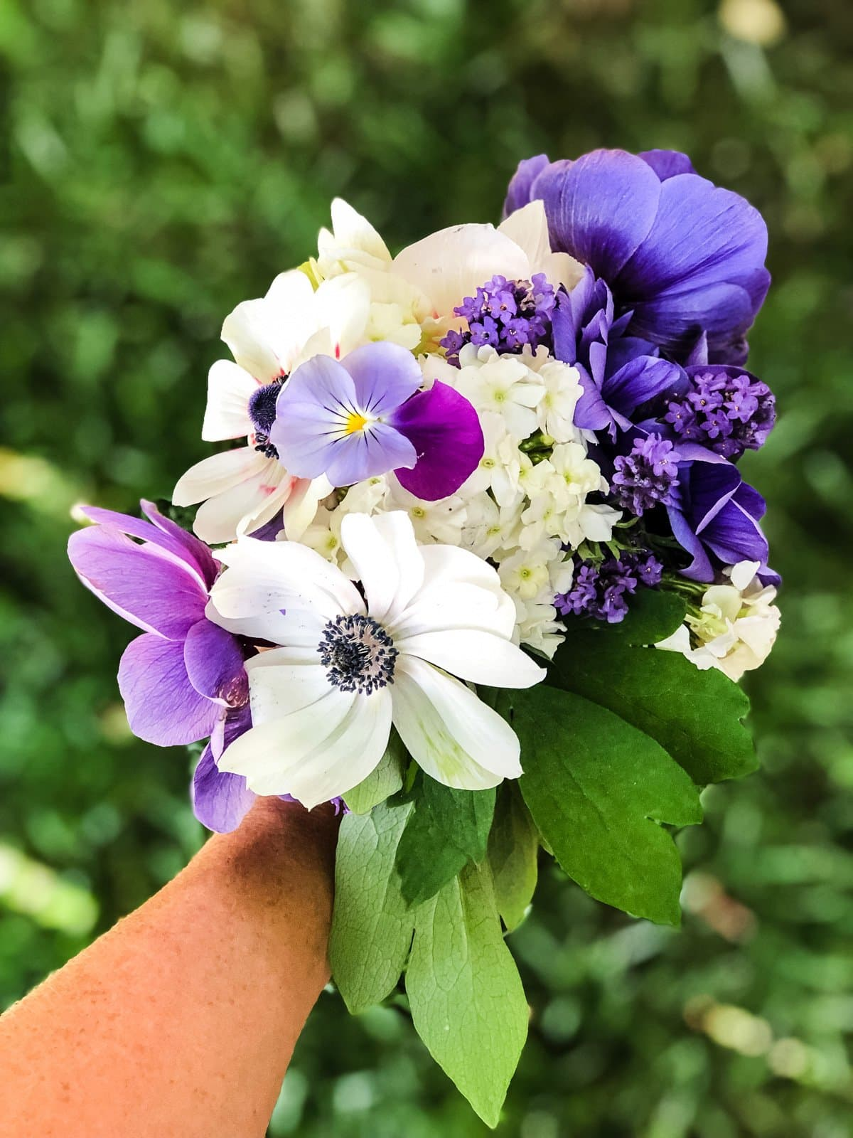 Flowers From My Garden: All the Anemones!