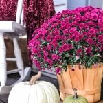 Tips for Decorating a Fall Porch