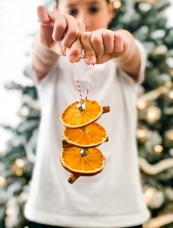 Cinnamon Stick and Orange Slice Ornaments-2