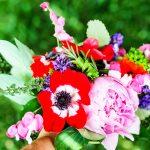 Tips for Growing a Cut Flower Garden