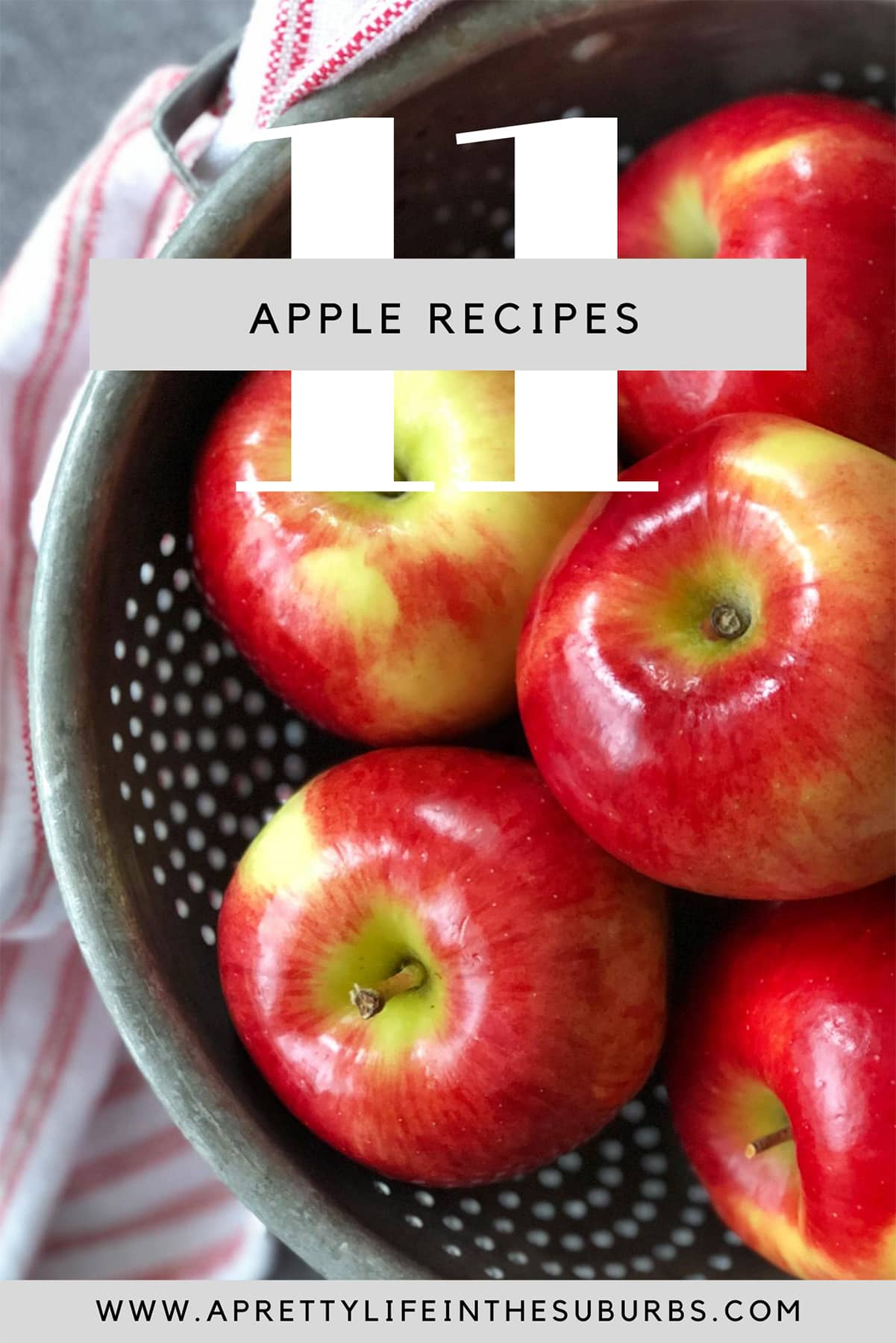 11+ Apple Recipes