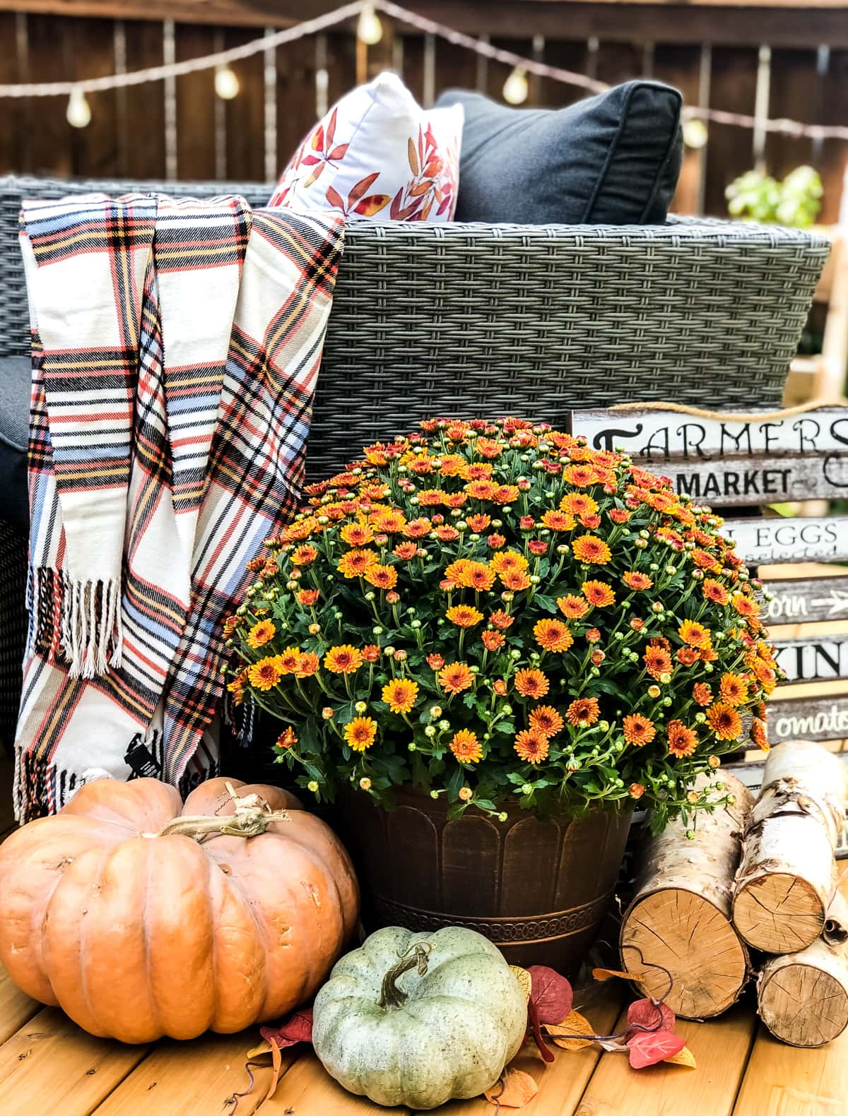 A fall arrangement of an orange mum and pumpkins with a string of lights in the background