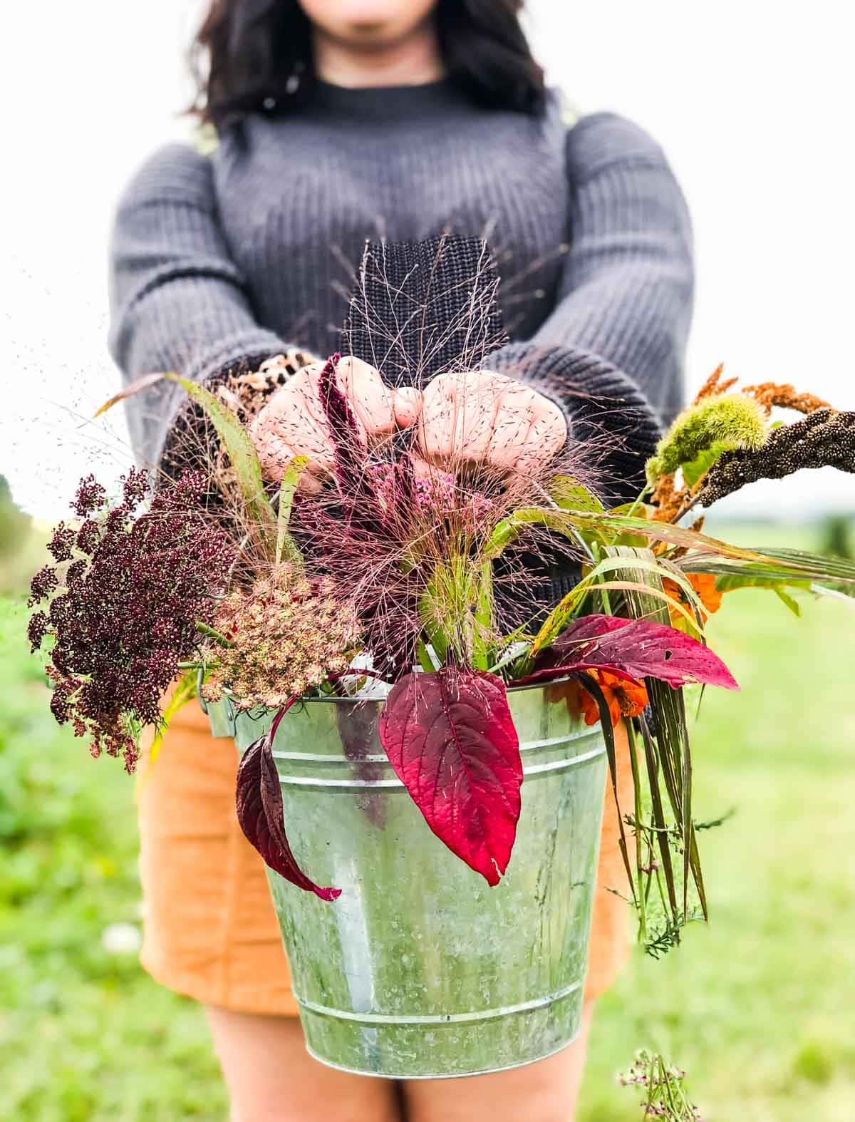 A bucket of fall grasses being held