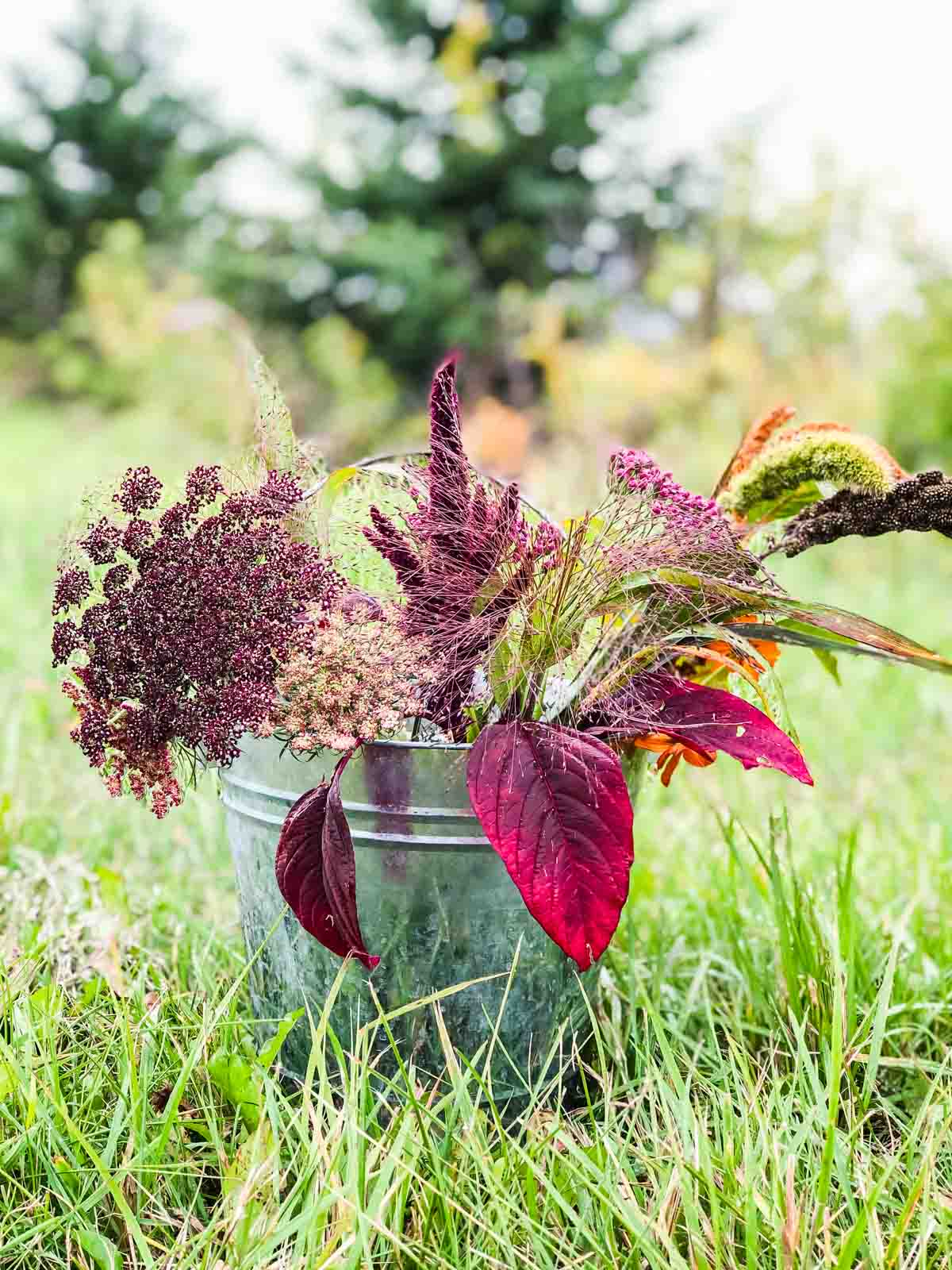 A bucket of fall grasses and flowers sitting in the grass