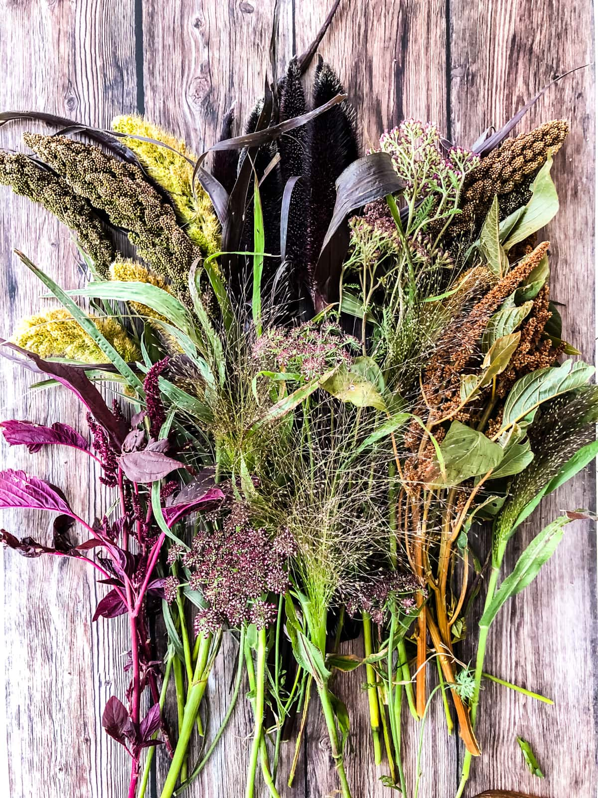 A top down view of fall grasses and flowers laid out on a wooden table